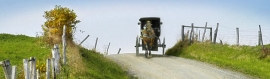 horse-drawn-carriage-ride-in-small-farm-website-header