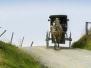 Animal Drawn Vehicles Headers