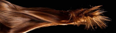 trendy-brown-long-hairstyle-website-header