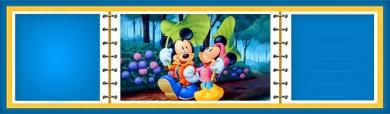 mickey-mouse-album-header