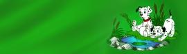 dalmatians-header