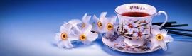 teacup-flowers-web-header