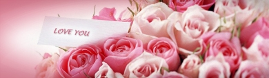 love-and-romance-pink-flowers-website-header