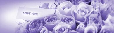 love-and-romance-purple-flowers-website-header