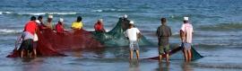 fishermen-and-fishing-nets-header