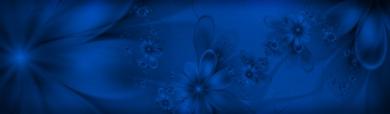 blue-dreamy-flowers-header