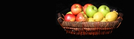 fruits-basket-web-header