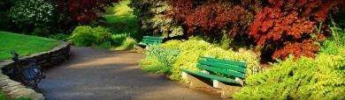 trees-flowers-garden-landscape-web-header