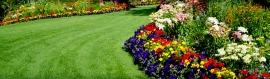 flowers-garden-with-lawn-path-header