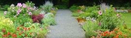 flowers-plants-garden-with-path-header