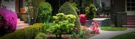 garden-and-bushes-landscape-header