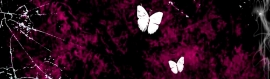 white-butterflies-on-pink-black-girly-background-header