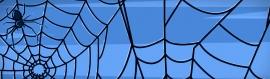 halloween-spider-blue-header