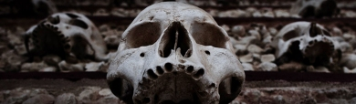 halloween-spooky-scary-dead-skulls-black-white-header-image
