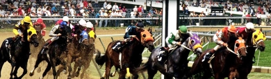 horse-race-game-header