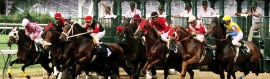 horse-racing-header