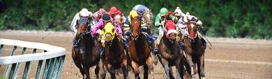 horse-racing-jockeys-header