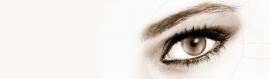 black-eye-website-header