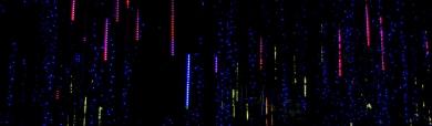 colorful-blurred-lights-website-header