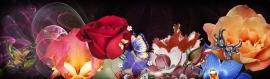 flowers-illustration-blogspot-header