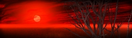 sunsets-illustration-art-blog-header