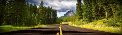 country-road-forest-header