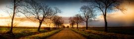 beautiful-country-road-header
