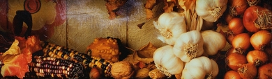 thanksgiving-celebration-harvest-day-website-header