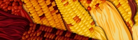 happy-thanksgiving-and-corn-website-header