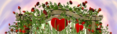 valentine-day-red-hearts-and-red-roses-web-header