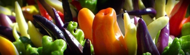 colored-paprika-vegetables-header
