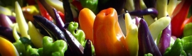 colored-paprika-vegetables-header