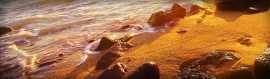 sea-coast-and-golden-sand-website-header